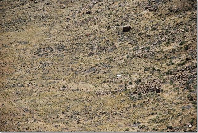 05-01-14 Meteor Crater AZ (65)