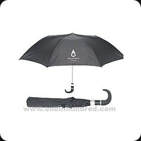 Collapsible-umbrella---This-um-4983722