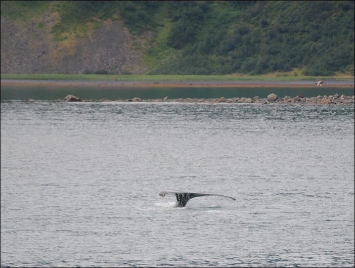 2013_08_Alaska 346