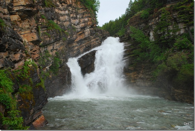 06-24-13 A Waterton National Park (64)