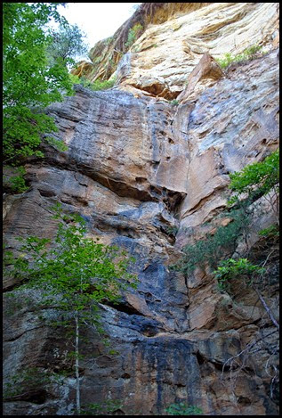 25 - Rock Garden Trail - Cliffs seem to change colors