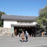 in Osaka, Osaka, Japan
