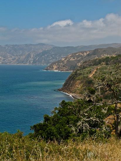 Channel Island NP Santa Cruz Island Pelican Bay Hike (3)