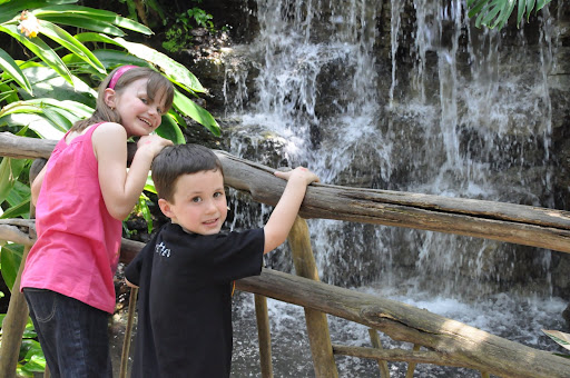 Kids cool off at the waterfall