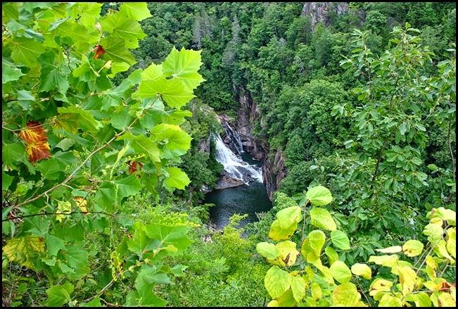 25h5 - South Rim Trail - View of Gorge