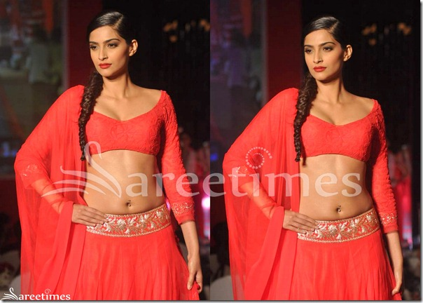 Sonam_Kapoor_Manish_Malhotra_Saree_Blouse