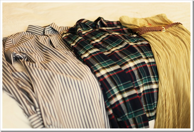 stripes or plaid 037-1