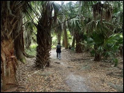 Bolen Bluff Trail-Spring Equinox 009
