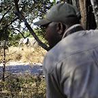 Vorsicht, ein Elefant kreuzt unseren Weg! © Foto: Marco Penzel | Outback Africa Erlebnisreisen