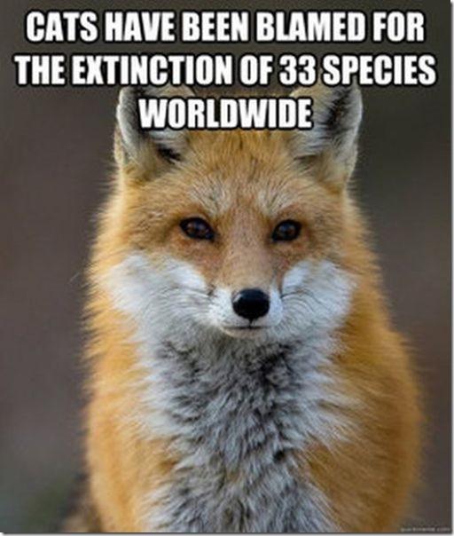 fox-facts-meme-15