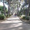 Villa_Celestina_13.jpg