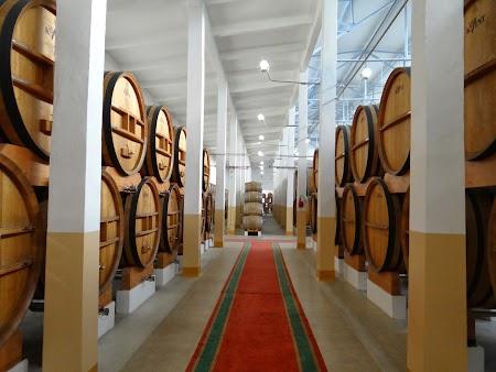 Obiective turistice Tiraspol: Hala cu butoaie