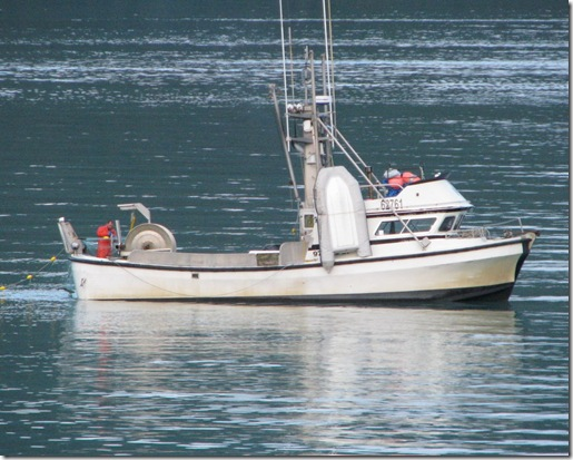 Netting Salmon 8-16-2011 7-43-39 PM 2516x2012