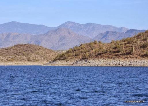 Near the Agua Fria