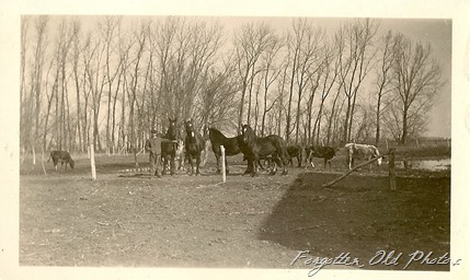 1922 Farming Photo
