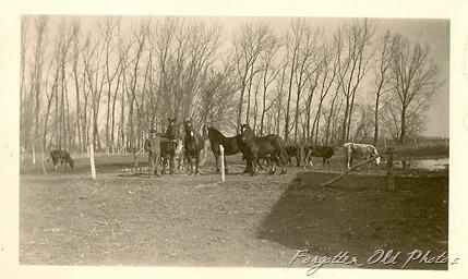 1922 Farming Photo