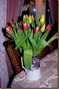 mars 2011 002