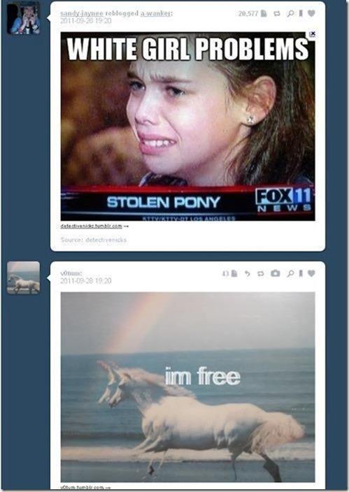 funny-tumblr-replies-13