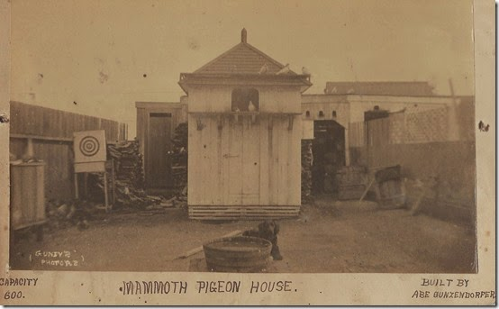 Mammoth Pigeon House