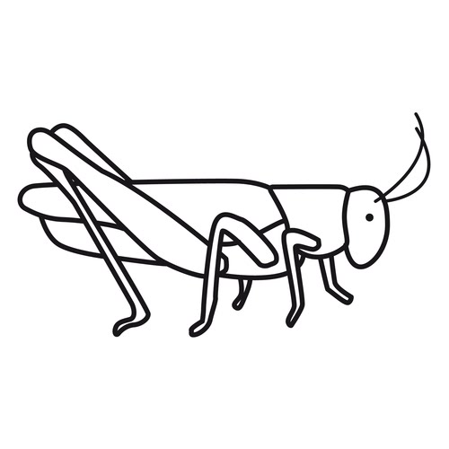 Grasshopper Coloring