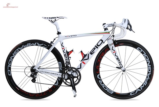vivelo-erg-rs-limited-1