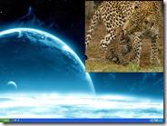 Come mettere due immagini come sfondo del Desktop