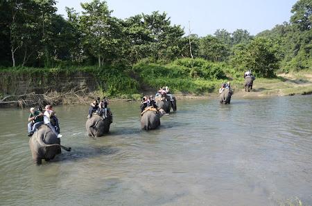 Safari elefanti Nepal