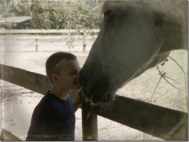 riley and horse