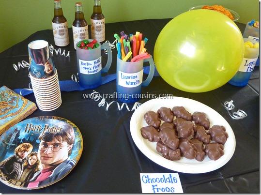 Harry Potter birthday party ideas from the Crafty Cousins (12)