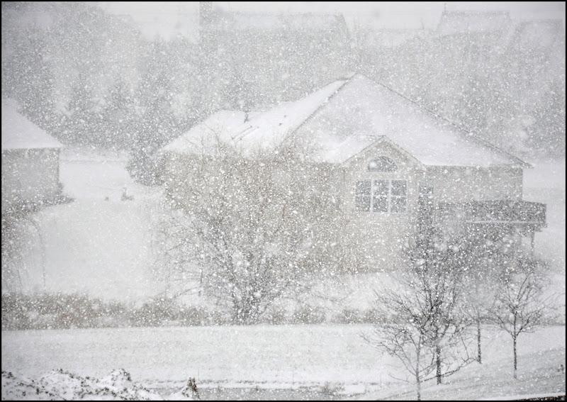 snow, 1-2012 001