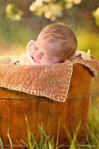 baby pip 8