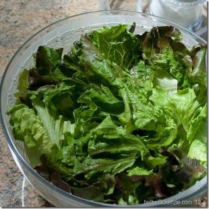 salad spinner4