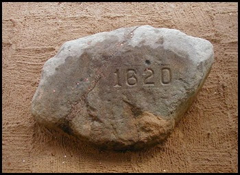 plymouth_rock3