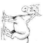 burro-701.jpg