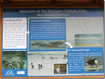 Sign about the estuary