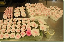 pinkroses12