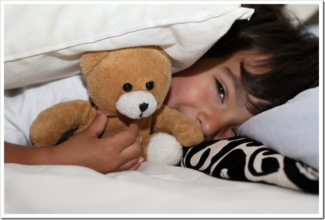 little teddy IMG_4395