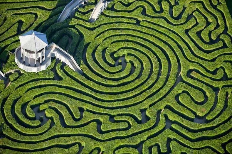 longleat-hedge-maze-1