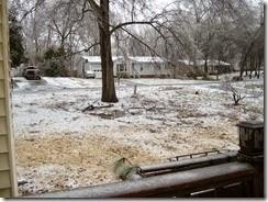 ice storm 2-15 003