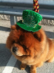 By the way, GK sent us this photo of him celebrating St. Patrick's Day with Karen!