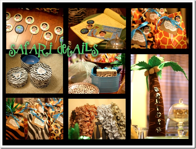 safari details collage