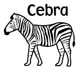 Cebra.jpg