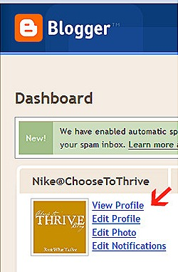 Blogger Dashboard - Mozilla Firefox 1132011 100349 AM.bmp