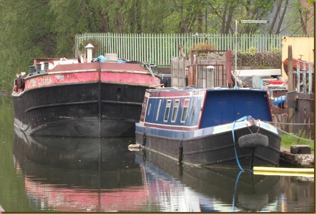 SAM_5527 Bedford Basin