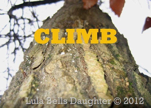 lulabellsdaughter CLIMB