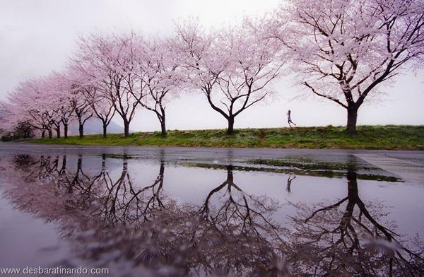 landscapes-paisagens-desbaratinando (29)