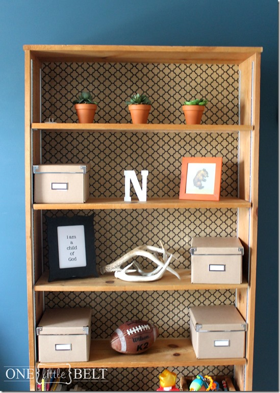 wallpaper-backed-bookcase4