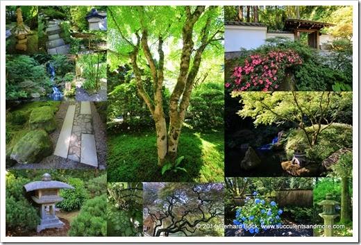 140712 Portland Japanese Garden