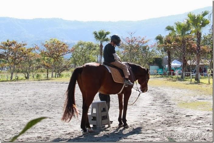 花蓮-理想大地渡假村-豐之谷生態公園。理想大地風之谷也可以騎馬。開放時間09:00~11:00,15:00~17:00。