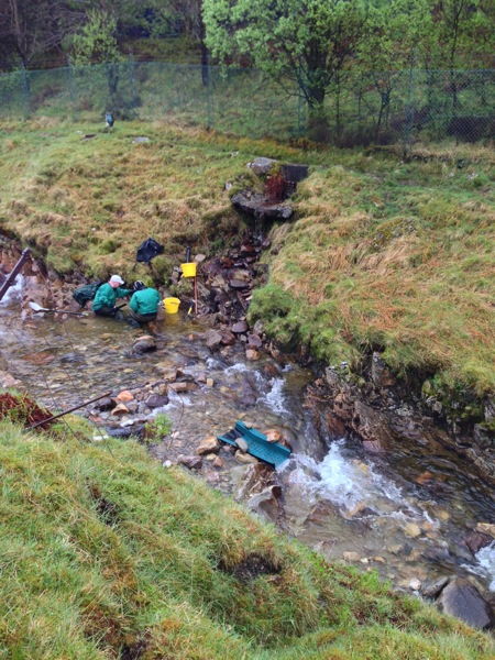 Gold Panning in Scotland.jpg